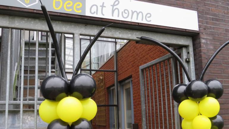 Opening Bee at Home